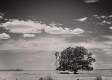 1_landscape-9